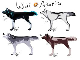 Wolf Point Adoptables by Cloudymayday