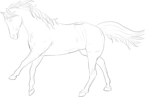 Horse Lineart by Lomasi89
