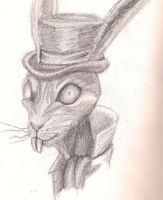 White Rabbit by Eyes-of-the-heart