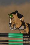 Chico Hunter Jumper Entry by Starcather9
