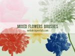 Mixed Flowers Brushes by xara24