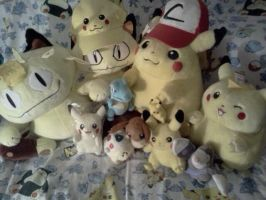 All of my Pokemon plush (and Hats) by Heatherannpt