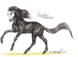 Voodoo watercolour by moonfeather