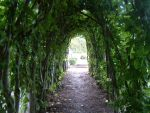 Green Tunnel 2 by NaviStock