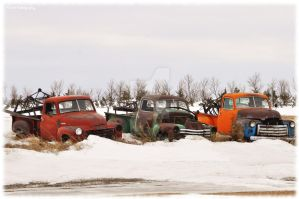 The Rusty Three by erbphotography