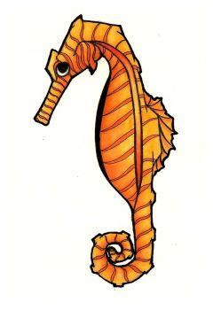 orange sea horse by Little-Rachel