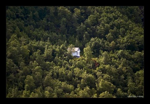 Old House in the Woods by bkm