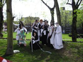Bleach in the trees group by tousen218