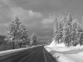 The long road home by Tekiva