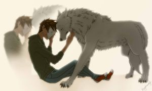 Cryaotic and wolf by Kingdomwolf13