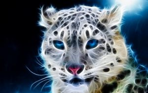 guepard blue by gsyp59