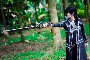 Elucidator's Nature : Kirito (Sword Art Online) by Brenainn