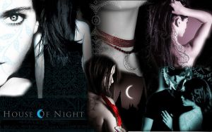 House of Night wallpaper by xjesus-freakx