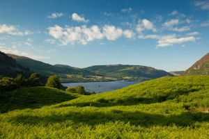 Summer Lakeland by scotto