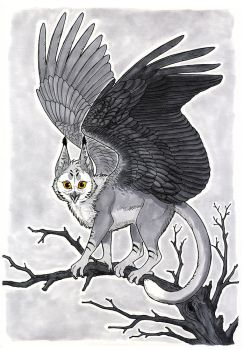 Owlcat by Anisis