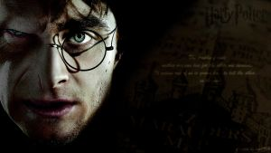 Wallpaper - Harry Potter by lmd1984