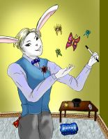 The Magician Rabbit by alicelights