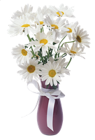 Daisies Transparent Vase Bouquet by jasminwtf