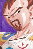 King Vegeta by MajinLu