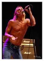 Iggy Pop by divagation