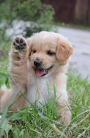 High Five! by Sashay007