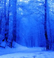 "Premade Background: ""Winter Forest 2"" by amygdaladesign"