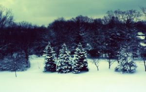 9 Cold Vision by LucisCaelum