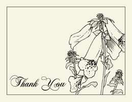 Thankyou Card - Shower - Hahne by TheDaneOf5683