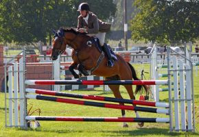 Show Jumping 2 by Sooty-Bunnie