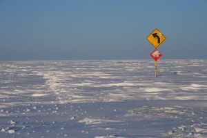 Left Turn by Arctic-Stock