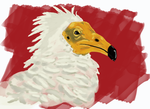 Egyptian Vulture by TheFellBeast