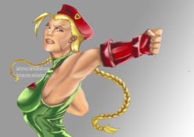 Street Fighter: Cammy by jadeystar1