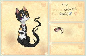 ace the cat by Sourful