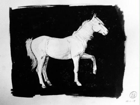 #28 Drawing a horse a day 2015 by Nienke15