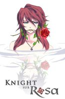 Knight sub Rosa - vol 1 cover by IIclipse