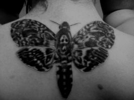 Death's head moth Tattoo by fluid1000