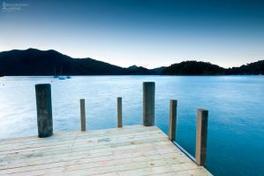 Picton NZ by AL-AMMAR