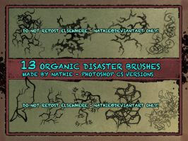 Organic Disaster Brush Pack by nathies-stock