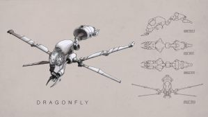 Dragonfly by Tim-Urs