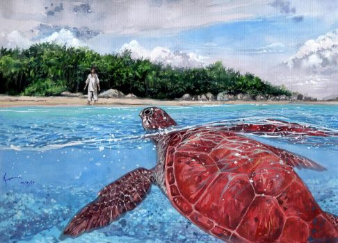 The Red Turtle by Nick-Ian