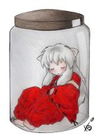 Bottled Inuyasha. by HikariDarkheart