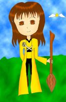 Quidditch Trial 20 by crazypic by Hogwarts-Castle