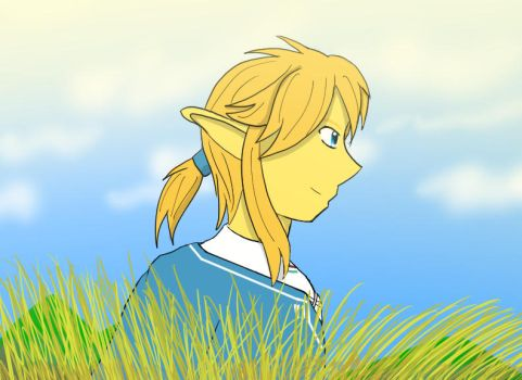 New Link Profile by Paladin0