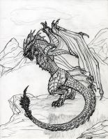 Wyvern by draks