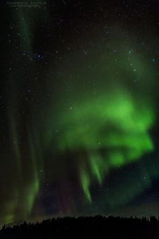 Northern Lights by DominikaAniola