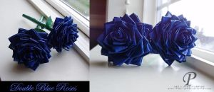 Double Blue Roses by Pyro-Vampire