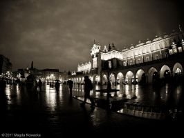 Krakow Fisheyed II by schelly