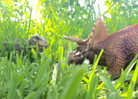 T-Rex vs. Triceratops by LordSpino