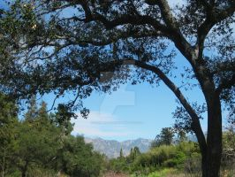 San Gabriel Mountains Framed by ShipperTrish