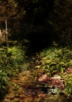 A Forest Pool_ 3 by GoblinStock